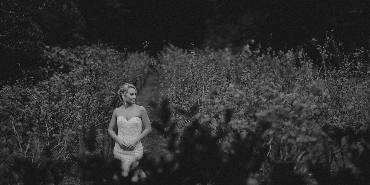 A bride in a Kel-Leigh Couture gown stands amongst the grape vines at Fires Creek Winery