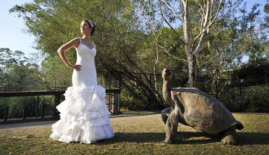Central Coast Bridal Couture_003