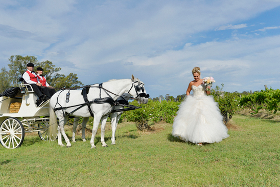 Hunter Valley Gardens Wedding Photography_039