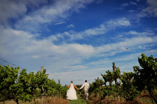 Hunter Valley Gardens Wedding Photography_045