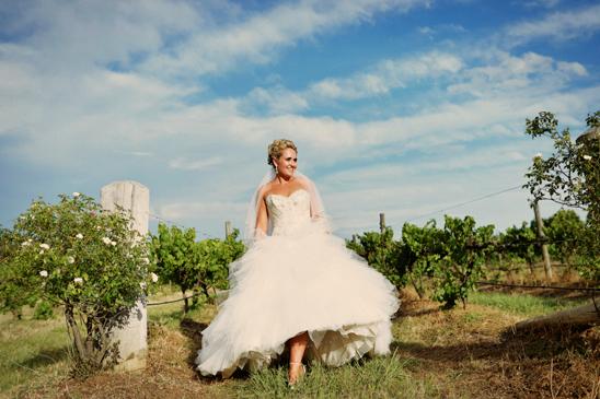 Hunter Valley Gardens Wedding Photography_048